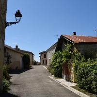 Castelnau d arbieu 55