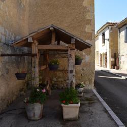 Castelnau d arbieu 63