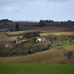 Castelnau d arbieu 693
