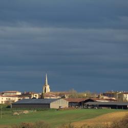 Castelnau d arbieu 885