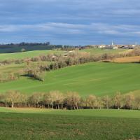 Castelnau d arbieu 888